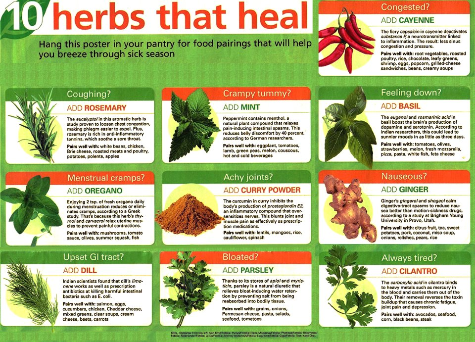 Natural Ways To Heal Your Body