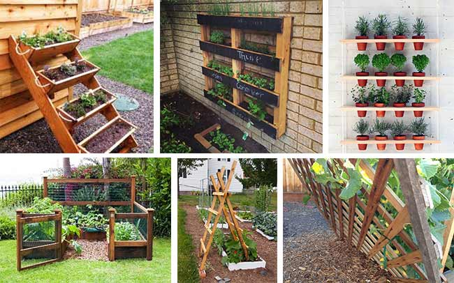 Planting vegetables with a limited space extreme natural for Limited space gardening ideas