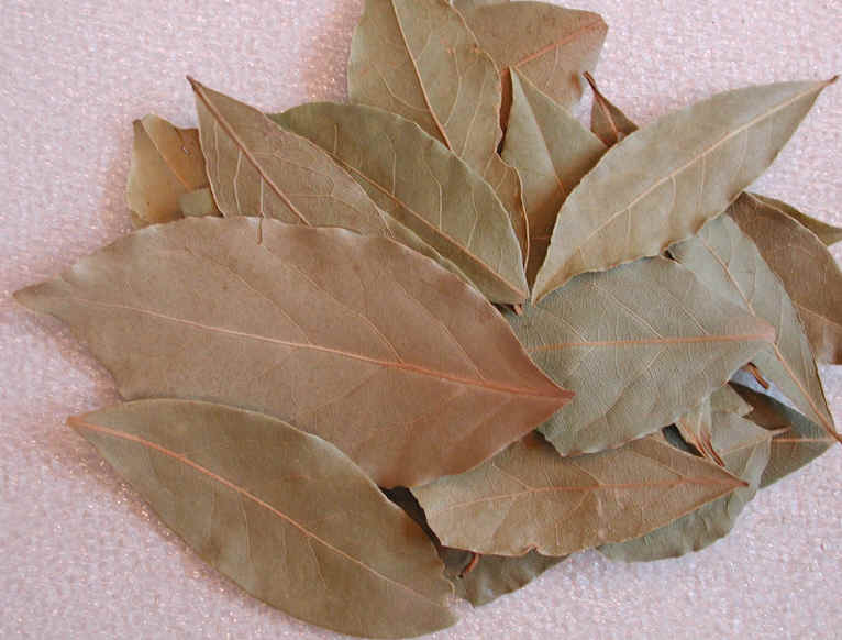 burn Bay Leaves
